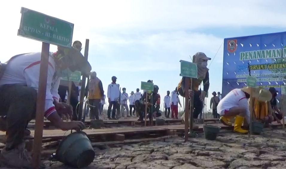 Kementerian LHK Berdayakan Kelompok Tani Tanam Mangrove