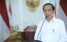 Presiden Perintahkan Panglima TNI dan Kapolri Tangkap KKB