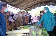 Disdag Kalsel Buka Pasar Murah di Mengkauk