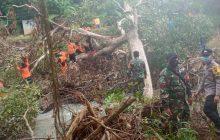 TNI-Polri HST Gotong Royong Evakuasi Pohon Tumbang